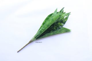 artificial leaves (2)